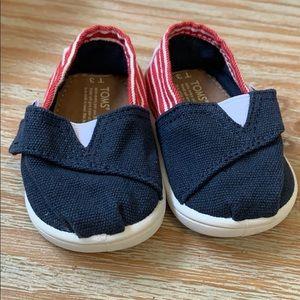 Infant American Toms!
